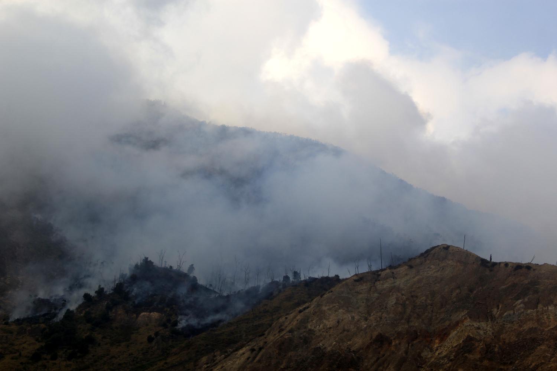 Kebakaran Gunung Papandayan