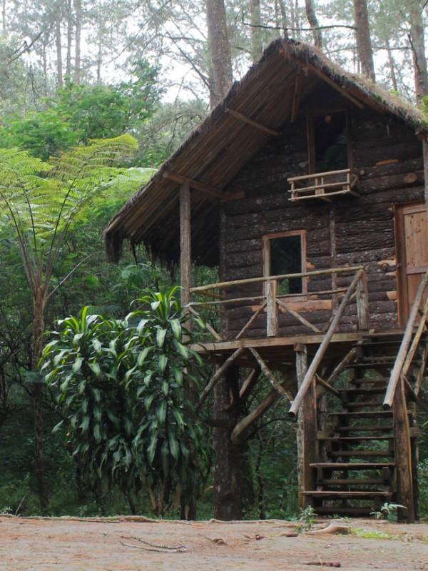 Rumah Pohon di Taman Buru Gunung Masigit - Kareumbi (Paket Wisata Garut, Wisata Edukasi Gunung Kareumbi, Study Tour, Camping di Garut)