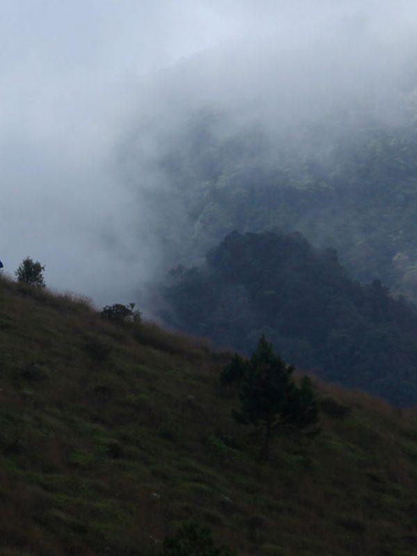 Pendaki Gunung Guntur - artikel Penghentian Sementara Pemungutan Tiket TWA Gunung Guntur - Jelajah Garut